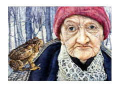 Old Woman with Toad by Judy Somerville